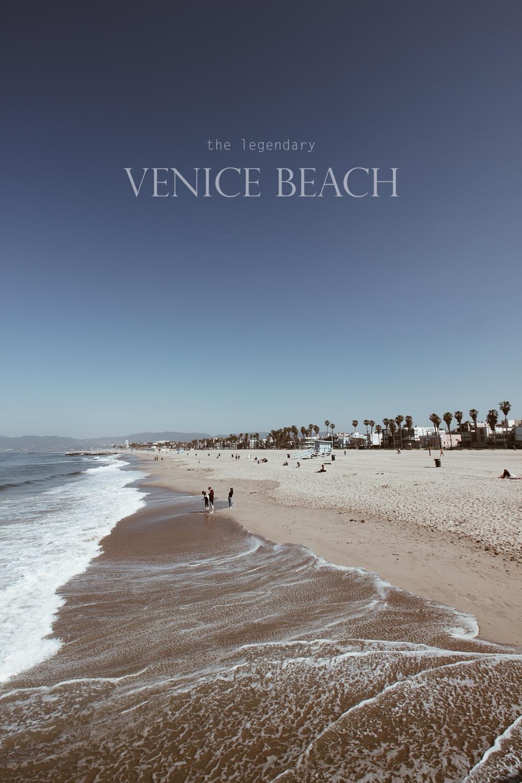 venice-3 txt