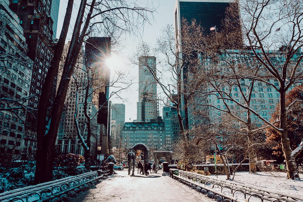 newyork-66